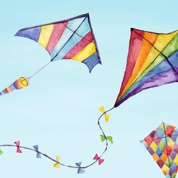 Kosair Charities Kite